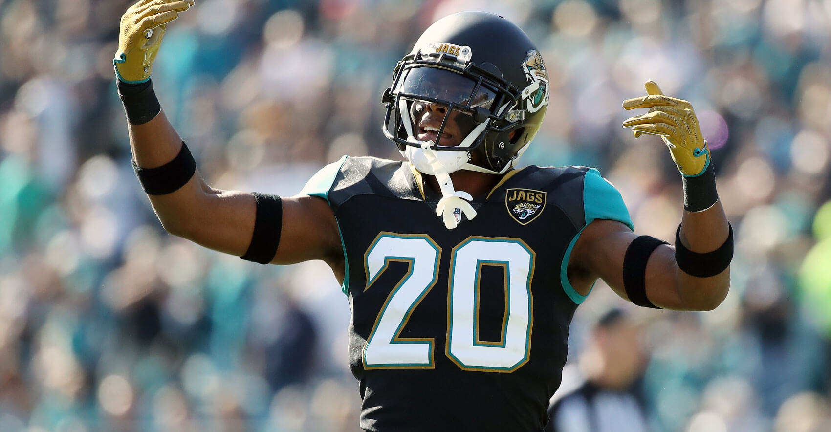 Fantasy Football: 25 DEF/ST Statistics from 2017